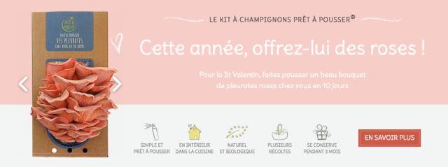 Bouquet de pleurotes roses - La Ruche Qui Dit Oui